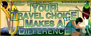 Your travel choice makes a difference